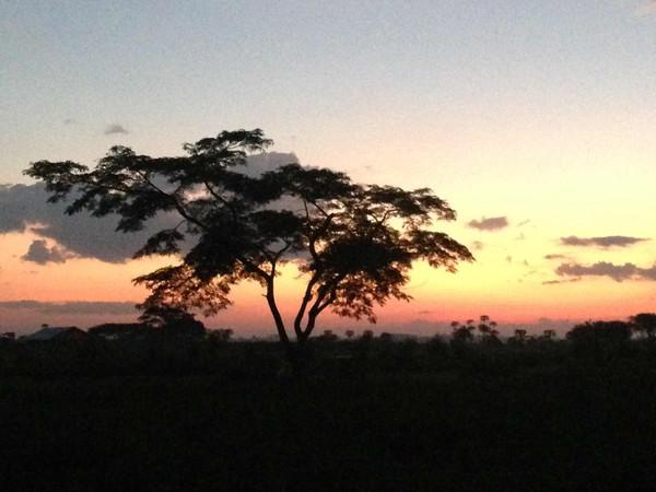 Amazed by Uganda